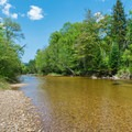Swift River.- Jigger Johnson Campground