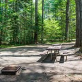 Typical campsite at Jigger Johnson Campground.- Jigger Johnson Campground