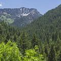 Mount Raymond (10,241 feet).- Bowman Fork Trail