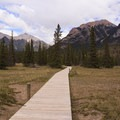 At the other end of the suspension bridge, the trail follows these boardwalks through fragile terrain.- Siffleur Falls