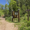 There is a large parking area at the trailhead. - Shingle Creek Trail
