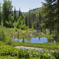 Views from the Shingle Creek Trail.- Shingle Creek Trail