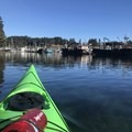 The large fishing boats moored in Dog Bay.- Kodiak Near Island Channel