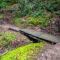 There are many small bridges along the trail.- Berry Creek Falls Loop via Big Basin Headquarters