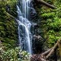 Berry Creek Falls.- Berry Creek Falls Loop via Big Basin Headquarters