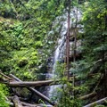 Looking at the second waterfall from the trail- Berry Creek Falls Loop via Big Basin Headquarters