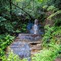Lower tier of Golden Falls.- Berry Creek Falls Loop via Big Basin Headquarters
