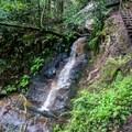 The trail going up lower Golden Falls.- Berry Creek Falls Loop via Big Basin Headquarters