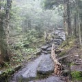Slippery flat rocks along the trail.- Blue Mountain Fire Tower