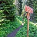 Horsepasture Mountain Trailhead.- Horsepasture Mountain Trail