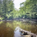 Fish Creek from Rollins Pond to Little Square Pond.- Rollins Pond Loop
