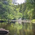 Navigating Fish Creek.- Rollins Pond Loop