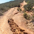 Almost there.- Glider Port Trail to Black Mountain