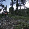 Clambering out of tree line.- Erosion Pillar Trail