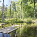 The trail is flooded by beavers.- Poke-O-Moonshine Fire Tower