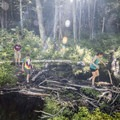 Crossing over a beaver dam.- Poke-O-Moonshine Fire Tower