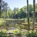 Looking back over the beaver pond.- Poke-O-Moonshine Fire Tower