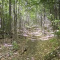The path continues up the mountain.- Poke-O-Moonshine Fire Tower