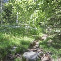 The trail becomes narrow and rocky as you approach the top.- Poke-O-Moonshine Fire Tower