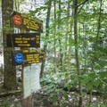 Continue to follow the red trail markers.- Pharoah Mountain