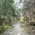 Gaining elevation on a worn trail.- Pharoah Mountain