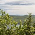 A view to the east through the trees.- Pharoah Mountain