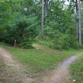 The walk-in tent camping section has seven sites in the woods.- Cowans Gap State Park