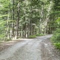 The dirt road to Crane Pond.- Pharoah Mountain