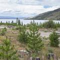 Walk-in campsites at Arapaho Bay: Roaring Fork Campground.- Arapaho Bay: Roaring Fork Campground