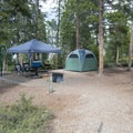 Typical campsite at Sunset Point Campground.- Sunset Point Campground