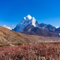 The spring season brings much more color to the Khumbu Region. - Everest Base Camp (EBC) Part II
