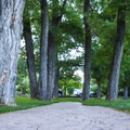 Today the location is a serene tree-filled city park that is perfect for families.- Mormon Station State Historic Park