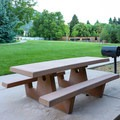 Tables with grills line a walkway on a grass field.- Mormon Station State Historic Park