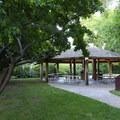 A covered gazebo open for group rental in the park.- Mormon Station State Historic Park