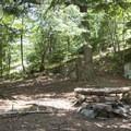 A designated camping area near the summit.- Pharoah Mountain