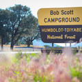 Bob Scott Campground sign along Highway 50.- Bob Scott Campground