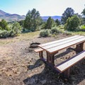 Sites have a table and fire ring.- Bob Scott Campground