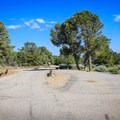 Five sites have a pull-through.- Bob Scott Campground