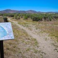 The trail begins behind a signed trail map. However, hikers should have their own navigation because many trails splinter and fork, and it can be hard to maintain a planned course.- North Loop Hiking Trail