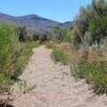 Soft sand makes the hiking slow.- North Loop Hiking Trail