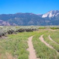 Views of Slide Mountain and Mount Rose to the northwest.- South Loop Trail