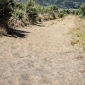 Much of the hike is through soft sand, making the route fairly slower than usual.- South Loop Trail