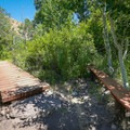 Footbridge and bench in the oasis.- Deadman's Creek