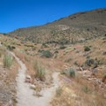 At an unsigned fork, the right fork is that trail to the observation tower.- Deadman's Creek
