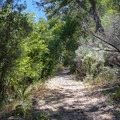 Shady path on the Carson River Trail.- Dayton State Park