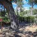 Trailhead for the Carson River Trail.- Dayton State Park