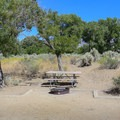 Most sites, unfortunately, suffer from a lack of shade.- Dayton State Park Campground