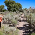 Being that there is no bathroom at the campground, a dirt trail heads toward the interior of the park, where there is a bathroom building.- Dayton State Park Campground