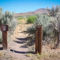 A short trail traces the eastern shore of Little Washoe Lake.- Little Washoe Lake