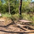 Picnic area at Martha Harville Memorial Oak Grove.- Martha's Grove Trail Loop